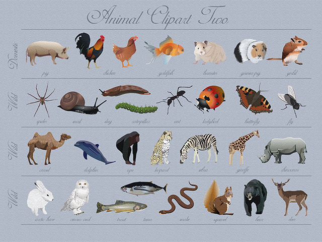 Animal Clip Art.