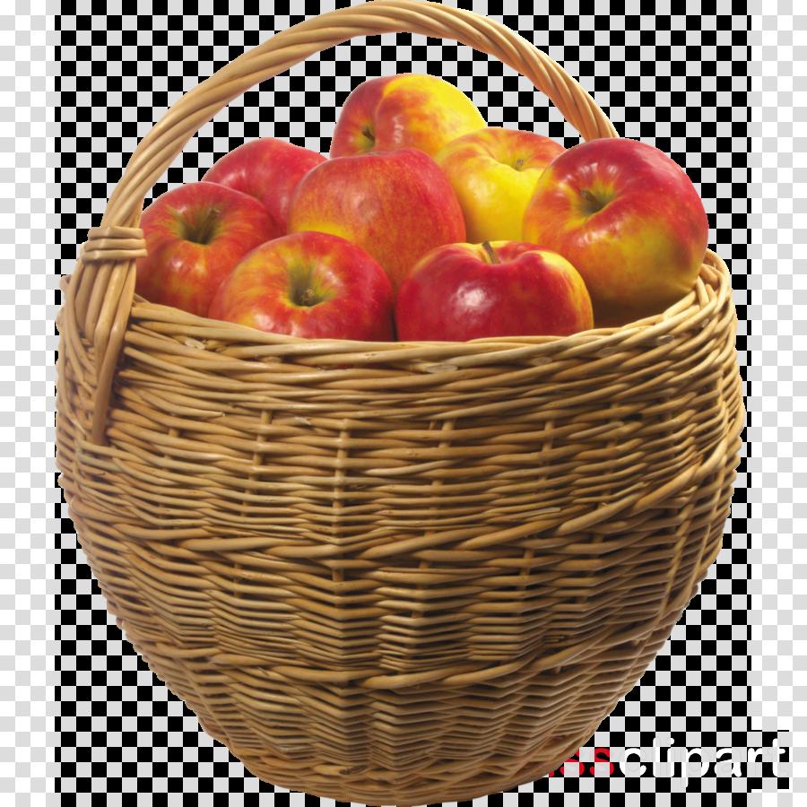 Apples Cartoon clipart.