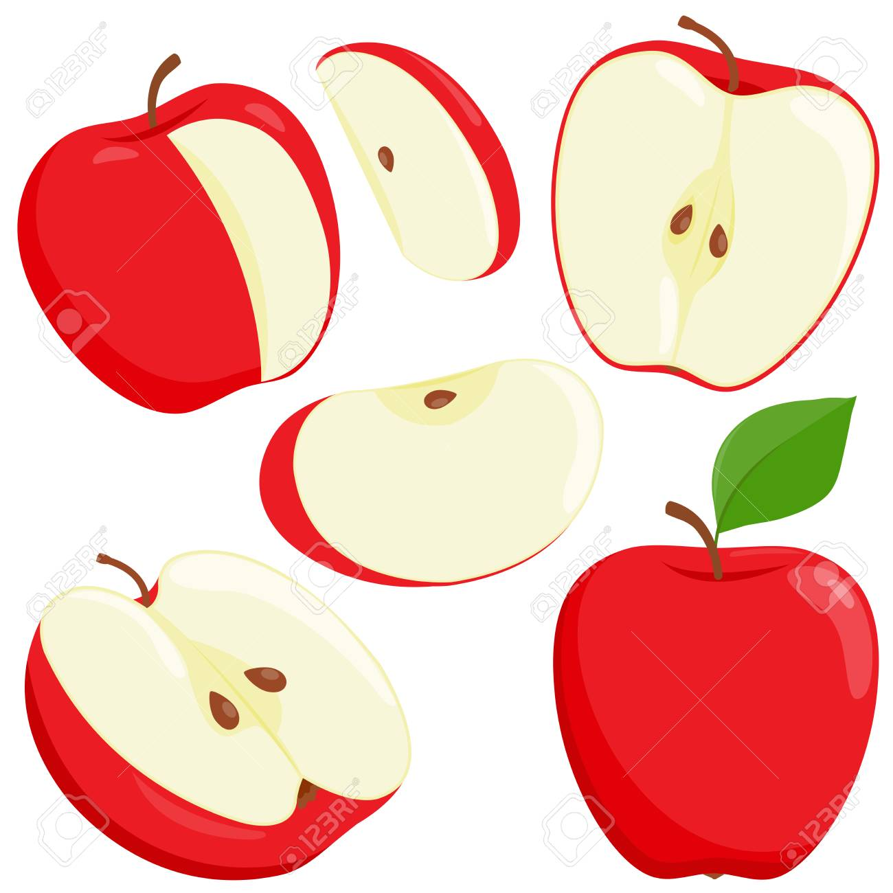 Red, whole and sliced apples. Vector illustration.