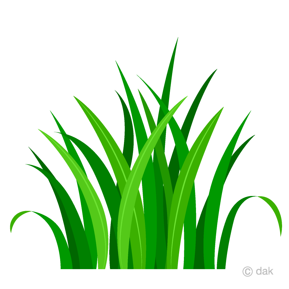 Free Bush Clipart Image|Illustoon.