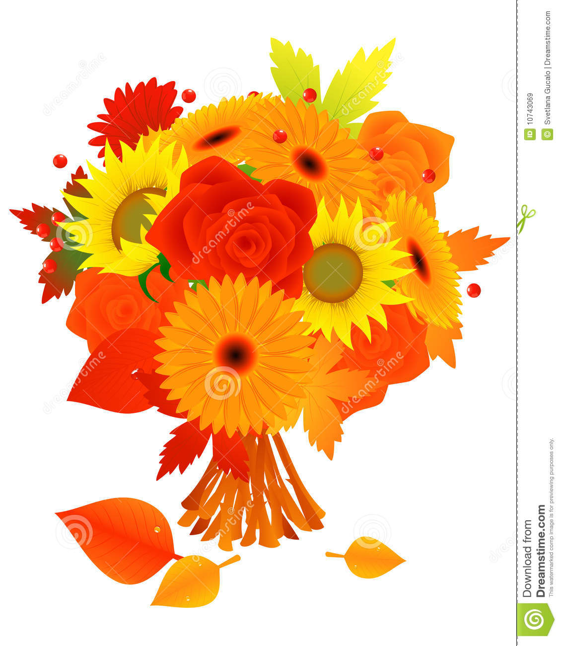 Bunch Of Autumn Flowers Royalty Free Stock Images.