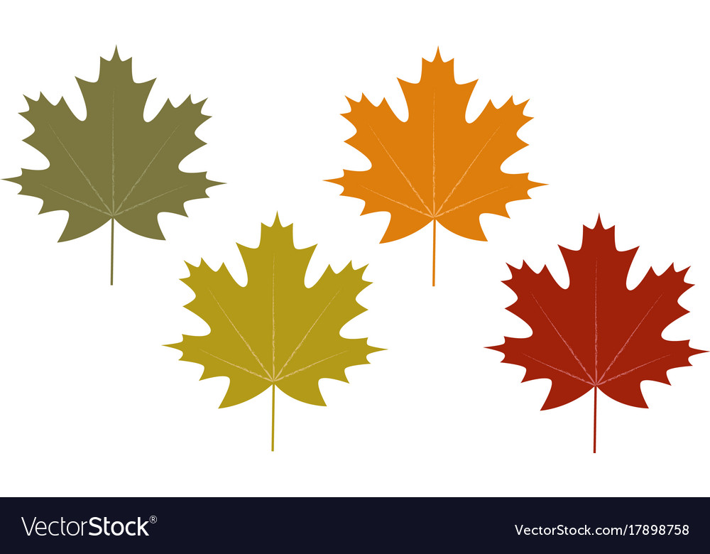 Set of clip art autumn leaves.