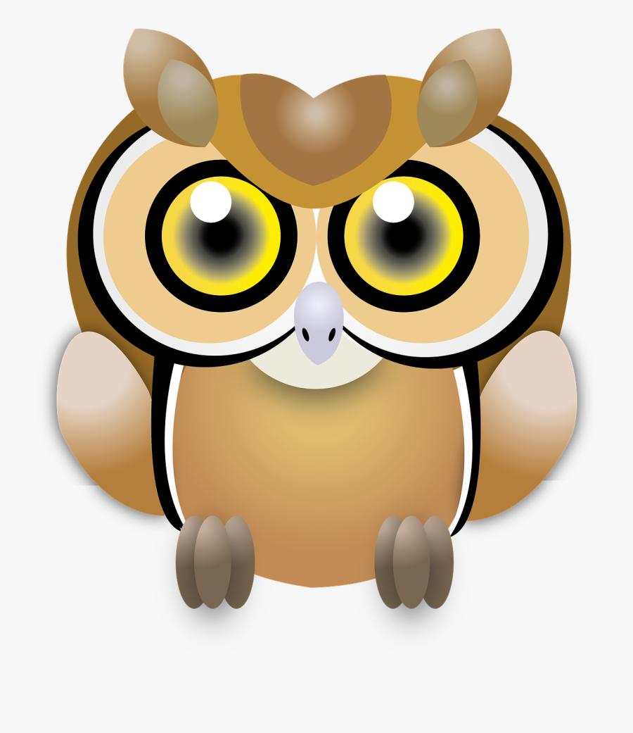 Owl Wisdom Ave.