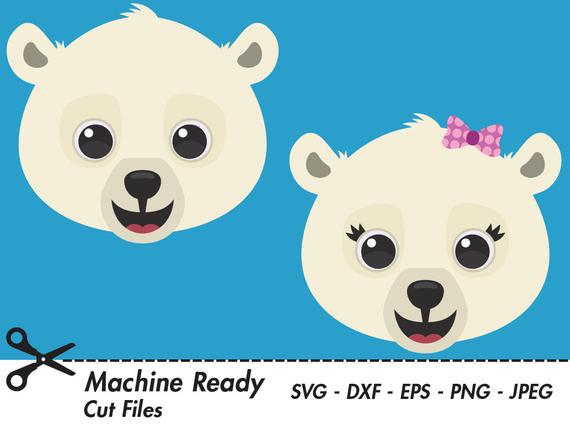 Cute Polar Bear SVG Cut Files, PNG polar bear clipart, baby bear clip art,  animal vector graphic, printable bear face, arctic art, winter.