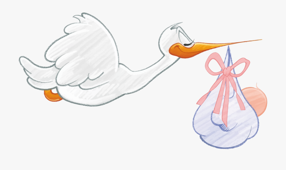 Stork With A Baby Clipart Baby.