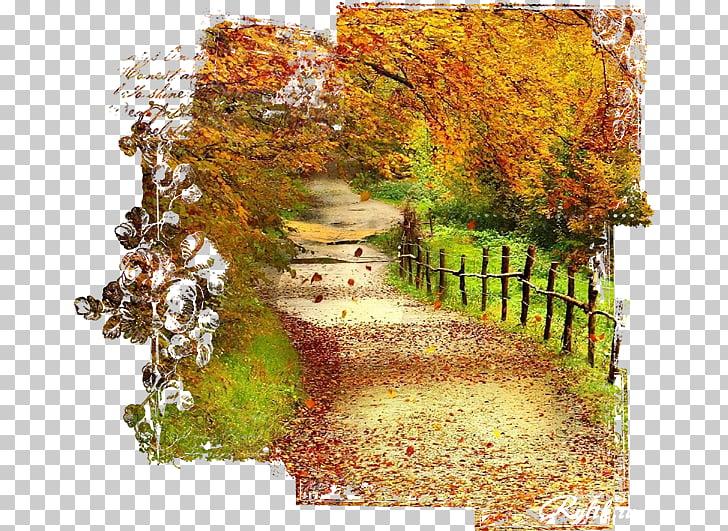 Desktop 1080p, autumn background PNG clipart.