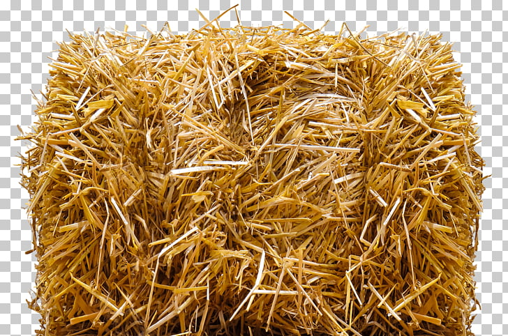 Straw Bale, brown hay PNG clipart.