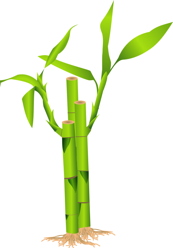 Free Clipart: Bamboo.