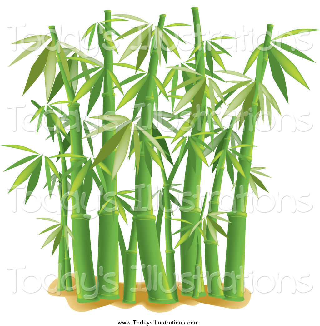Clipart Of Bamboo.