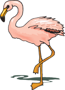 Standing Flamingo Clip Art at Clker.com.