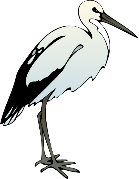 Free Ibis Cliparts, Download Free Clip Art, Free Clip Art on.