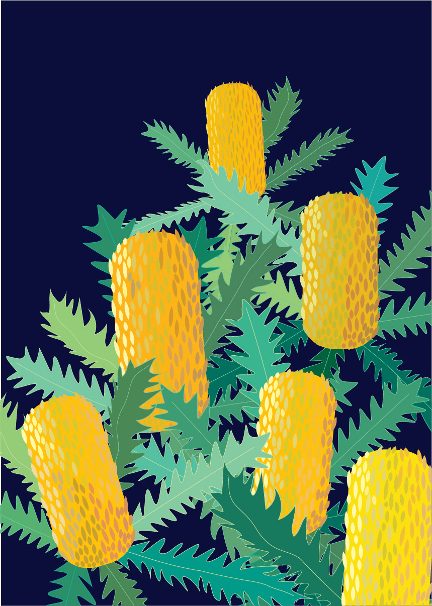 Banksia Artwork on Behance.