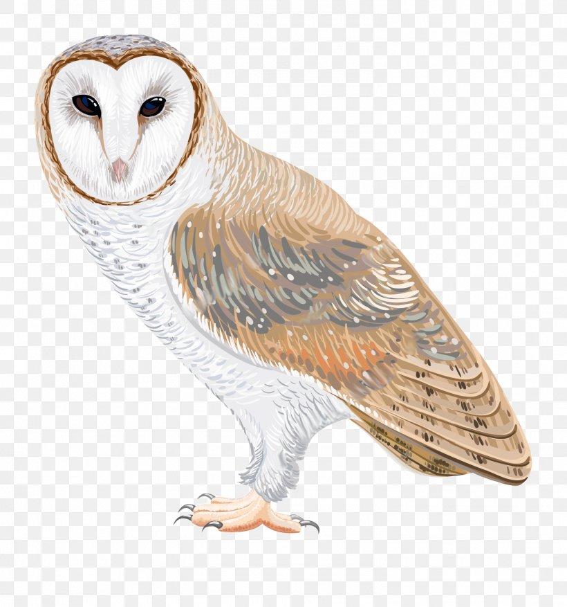 Barn Owl Drawing Clip Art, PNG, 1496x1600px, Owl, Barn Owl.