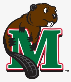 Minot State Baseball Scores, Results, Schedule, Roster.