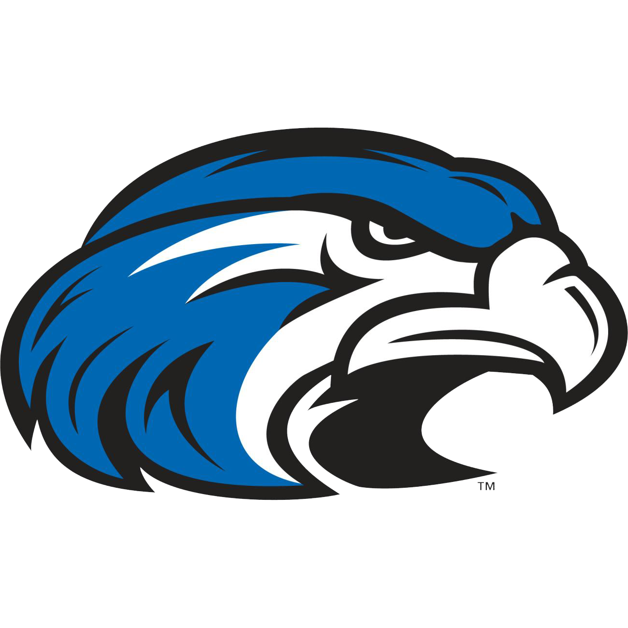Hawk clipart shorter university, Hawk shorter university.