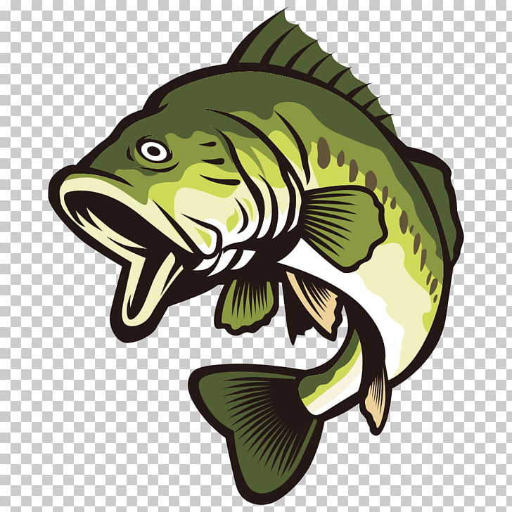 Largemouth bass , Open your mouth and green fish, green bass.
