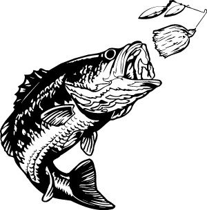 Bass Fishing Clipart.