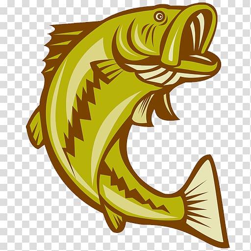 Largemouth bass Bass fishing, Fishing transparent background.