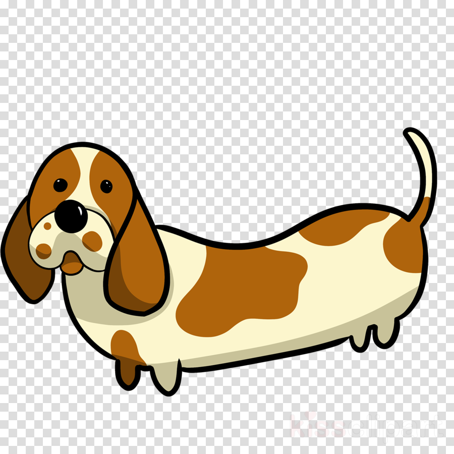 dog basset hound dog breed cartoon clip art clipart.