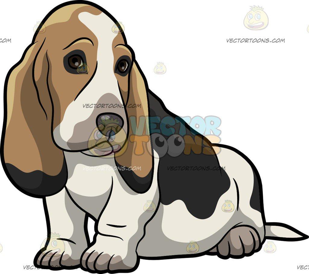 Basset hound clipart 3 » Clipart Station.