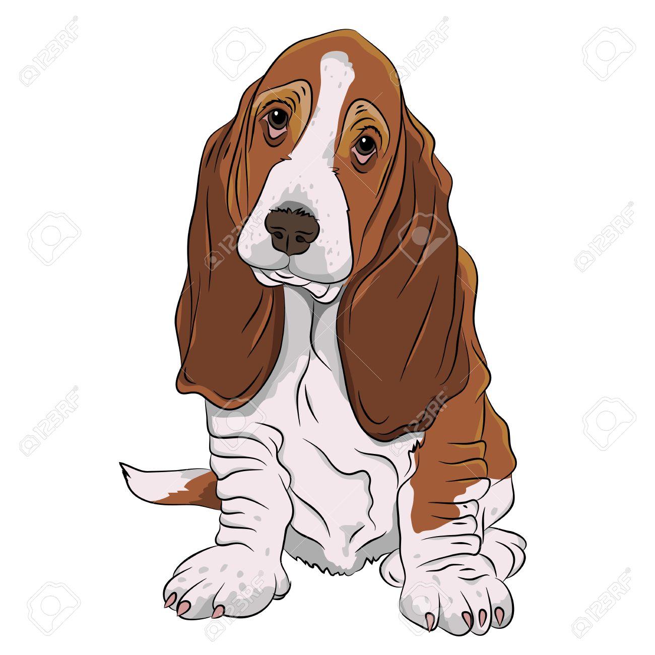 Basset hound clipart 9 » Clipart Station.