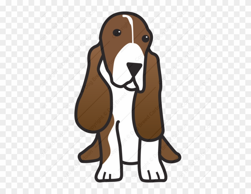 Cartoon Basset Hound Clipart Basset Hound Beagle Puppy.