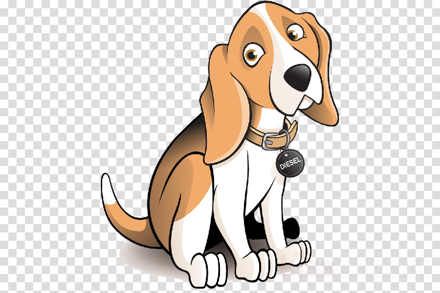 dog cartoon english foxhound dog breed basset hound clipart.