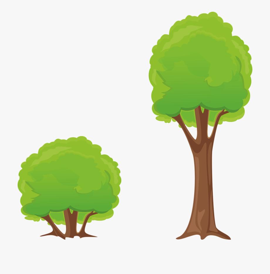 Baum Bush Clipart Natur Wald.