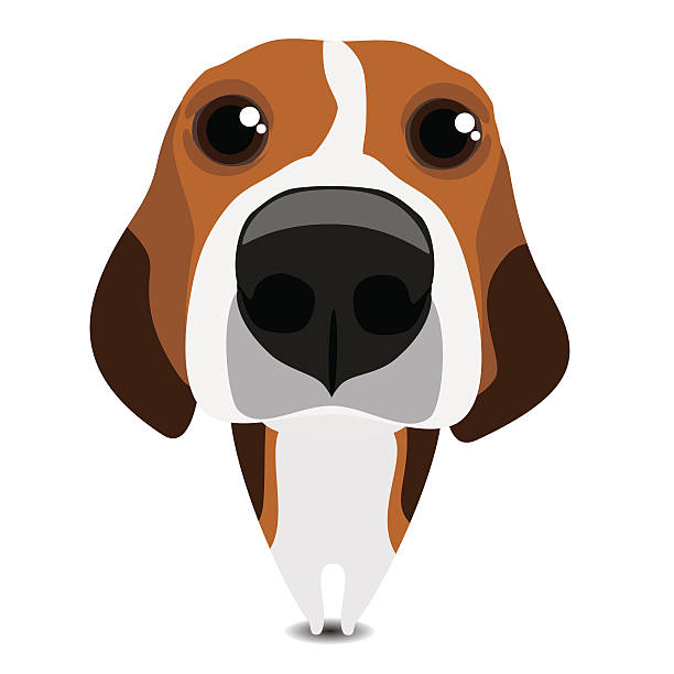 Beagle Clipart 120 Clip Arts For Free Download On Astonishing.