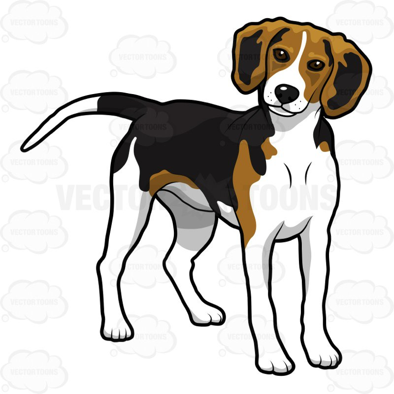 Beagle dog clipart 3 » Clipart Station.
