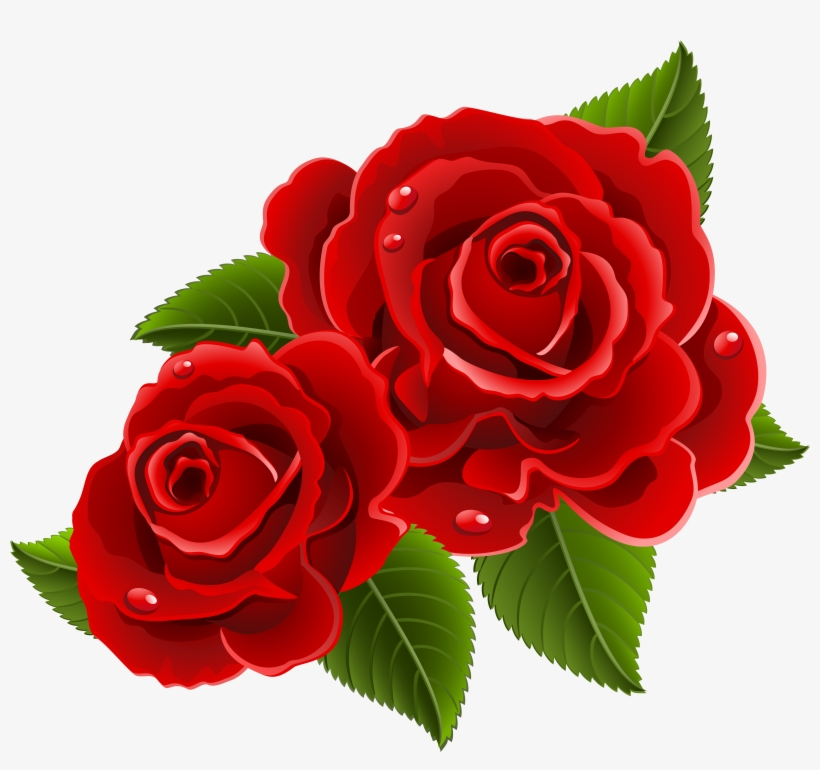 Beautiful Clipart Red Rose.