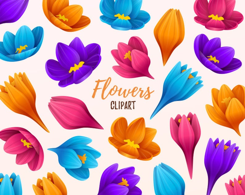Flowers clipart. Floral clip art. Beautiful flowers, spring colorful  flowers clipart. Vector graphic..