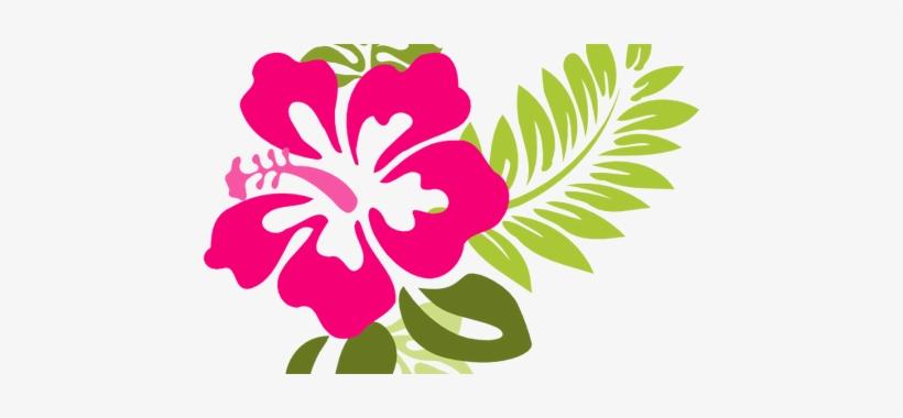 Beautiful Flowers Hawaiian Flower Vector.