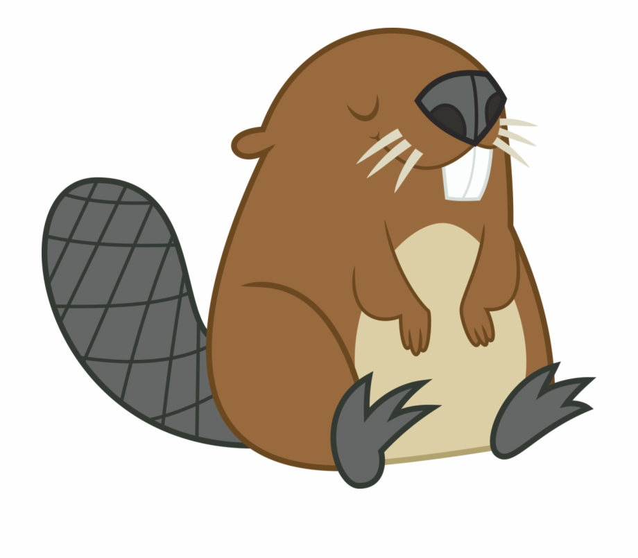 Beaver Png Images Transparent Free Download.