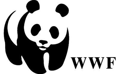 Wat is het verband met het bedrijf/de organisatie?; Het WWF.