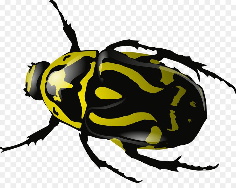 beetles clipart Beetle Clip art clipart.