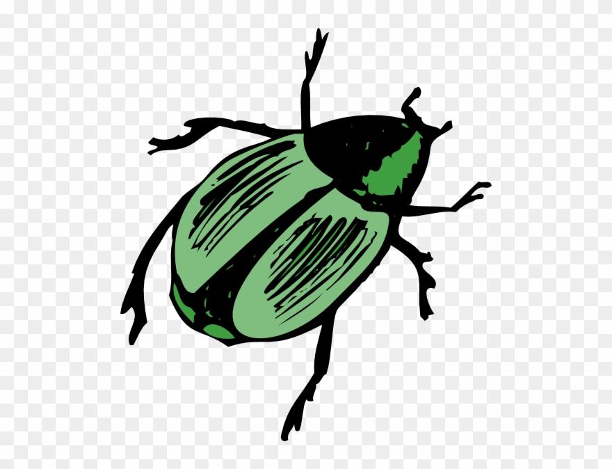 Shiny Green Beetle Clip Art.