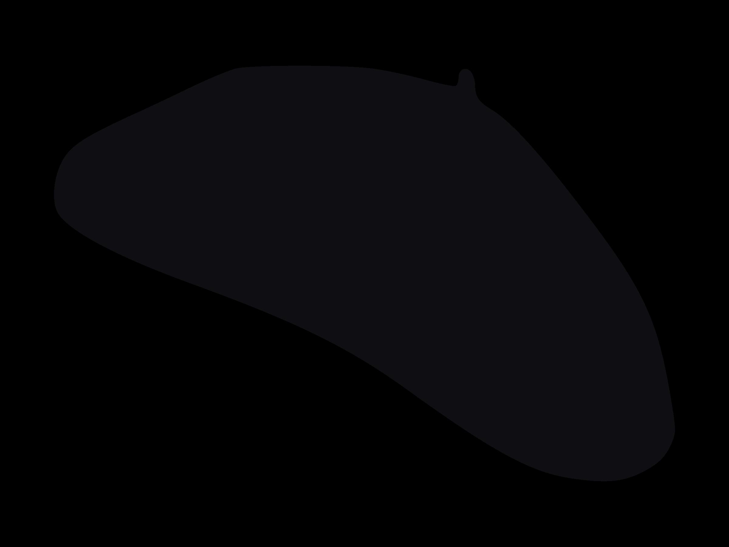 Beret Hat Cliparts.