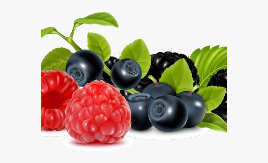 Berries Clipart Wild Berry.