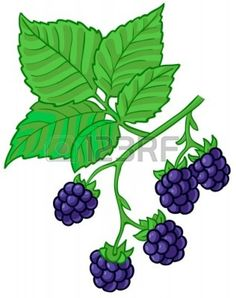 Berry bush clipart 5 » Clipart Station.