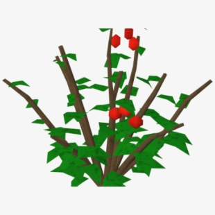 Free Holly Clip Art Cliparts, Silhouettes, Cartoons Free Download.