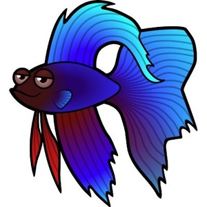 Beta fish clipart 2 » Clipart Station.