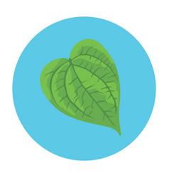 Betel Leaf Vector Images (33).