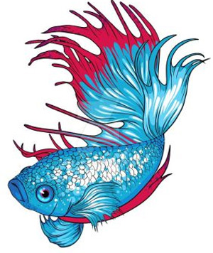 Betta Clipart at GetDrawings.com.