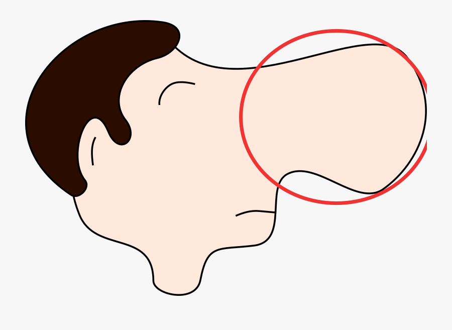 Clipart Nose Free Images.