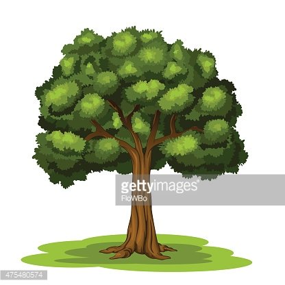 The Big Tree premium clipart.