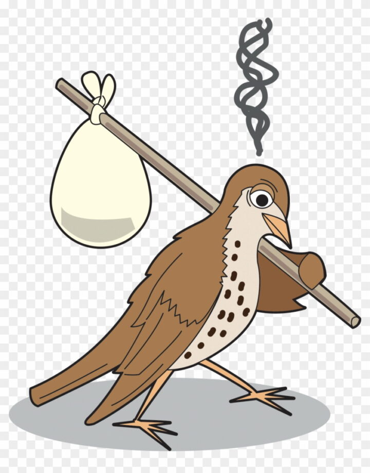 A Cartoon Of An Upset Bird With A Stick And Bindle Climate.