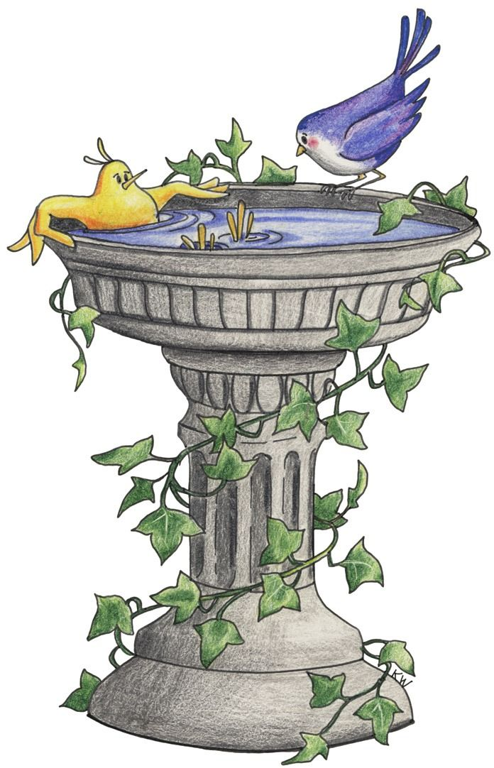Bird Bath Clipart.