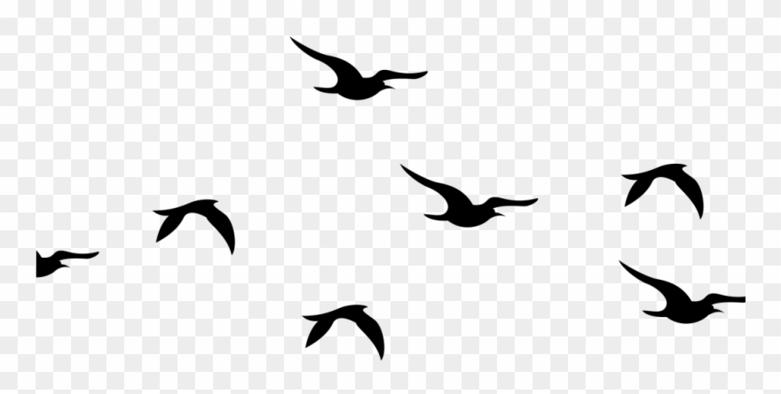 Flying Birds Silhouette Png Clipart (#4210104).