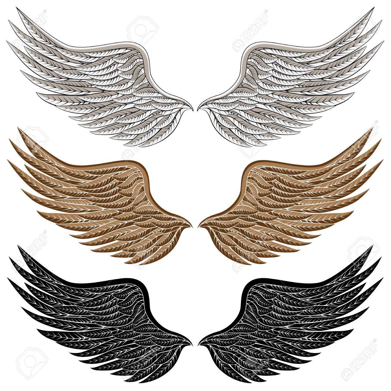 An Image Of A Detailed Bird Wings. Royalty Free Cliparts, Vectors.
